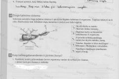 Bios-7-2-dalis-14-puslapis