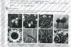 Bios-8-klasei-6-puslapis