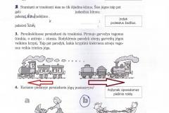 Biologija-6-klasei-2-dalis-13-puslapis