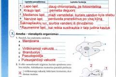 Biologija-tau-9-klasei-4-puslapis