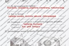 Biologija-7-klasei-1-dalis-4-puslapis