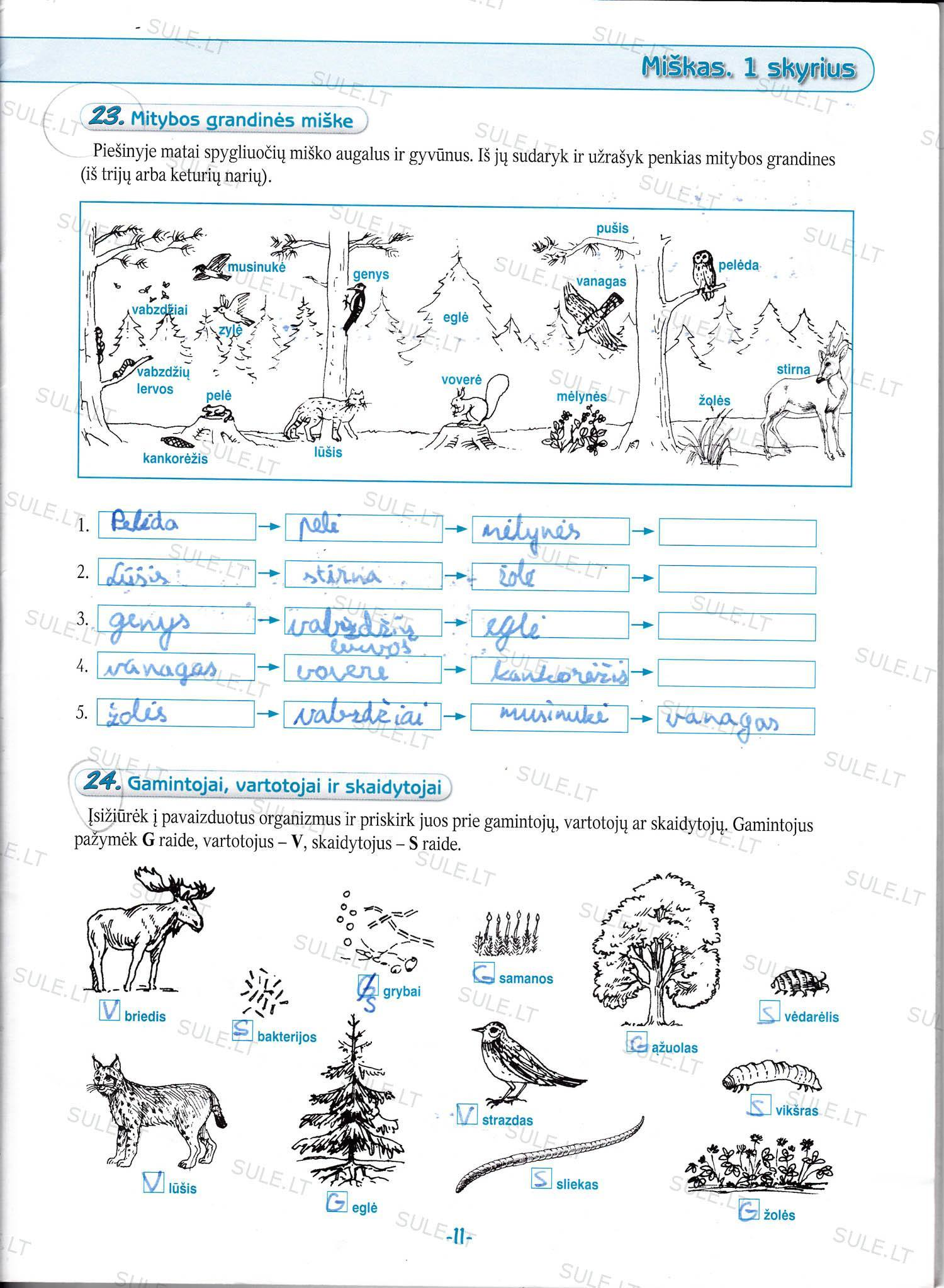 Biologija-6-klasei-2-dalis-11-puslapis2