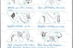 Biologija-6-klasei-2-dalis-3-puslapis