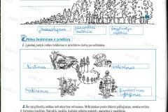 Biologija-6-klasei-2-dalis-4-puslapis1