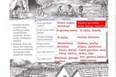 Istorija-7-klasei-1-dalis-8-puslapis