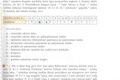 Lietuviu-kalba-9-klasei-1-dalis-13-puslapis