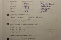 Nemetalu-Chemija-10-klasei-11-puslapis