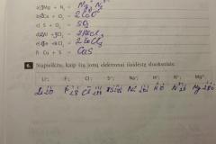 Nemetalu-Chemija-10-klasei-3-puslapis