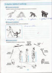 Biologija 5 klasei 1 dalis 36 puslapis